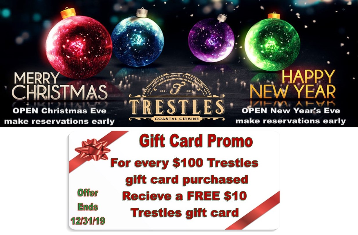 trestles christmas2019promowebb